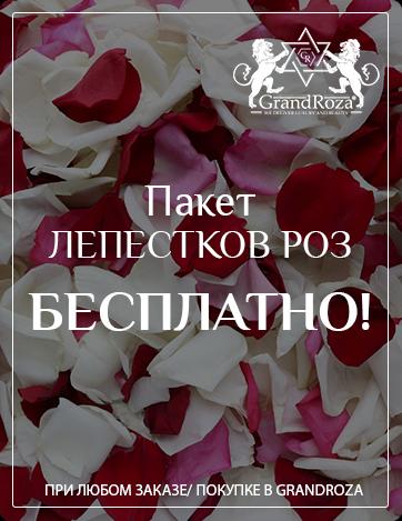 Лепестки роз Москва